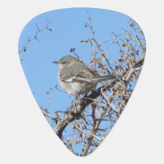 Mockingbird Guitar Pick