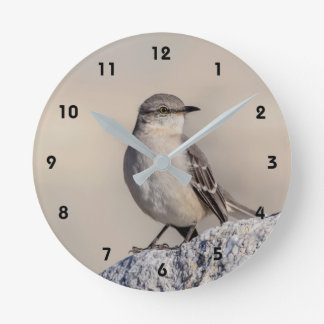 Mockingbird on a rock wallclock