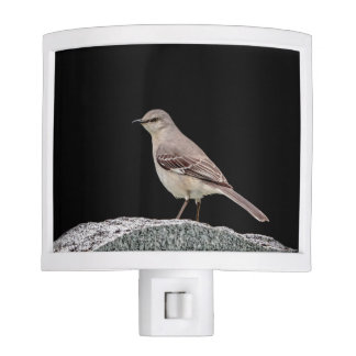 Mockingbird on a tombstone nite light