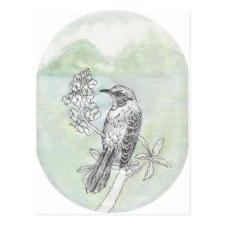 Mockingbird Postcard