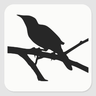 Mockingbird Silhouette Square Sticker