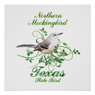 Mockingbird Texas State Bird Poster