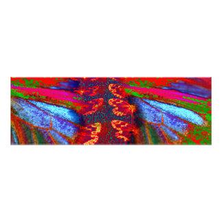 """""""Mode de vie de kiwi"""" - le papillon rêve l'ART de Impressions Photographiques"""
