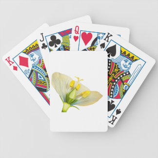Model of flower with stamens and pistils on white bicycle playing cards