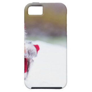 Model of Santa Claus standing in white snow iPhone 5 Covers