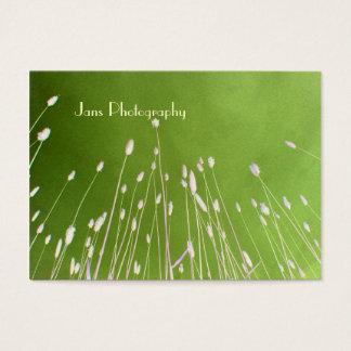 Modèle de Businesscards, herbe de blé Cartes De Visite