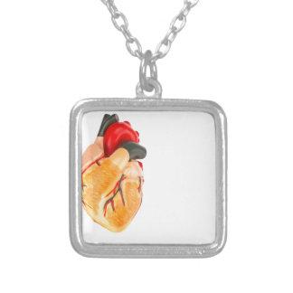 Modèle humain de coeur sur l'arrière - plan blanc collier