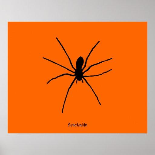 Modèle noir d'araignée poster
