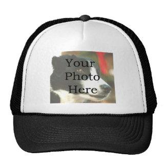 Modèle photo casquette