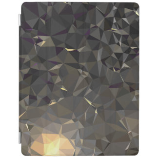 Modern Abstract Geometric Pattern - Sun Revolve iPad Cover