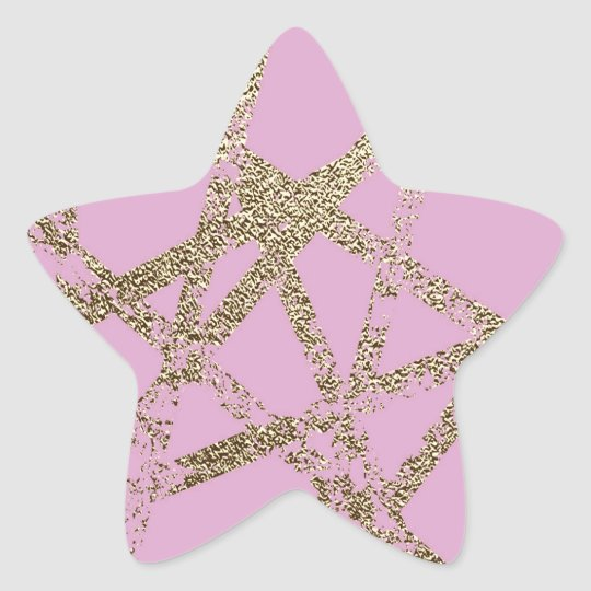 Modern,abstract,hand painted, gold lines pink star sticker