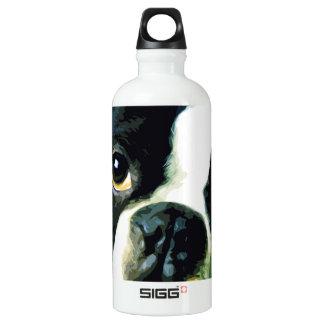 modern big Boston Terrier Water Bottle