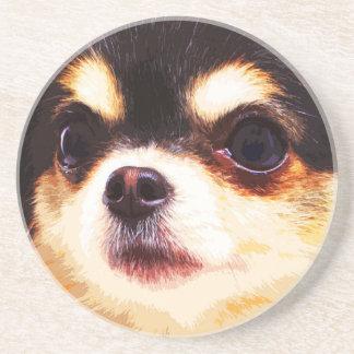 modern big Chihuahua Coaster