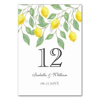 Modern Boho Watercolor Lemon Summer Wedding Table Card