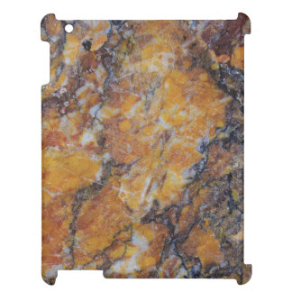 Modern Brown Faux Marble Stone 2 Case For The iPad 2 3 4