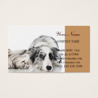 Modern cute animals pet service beauty salon business card