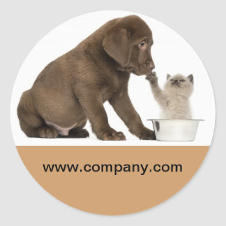 Modern cute animals pet service beauty salon round sticker