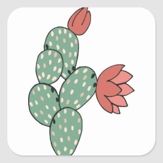 Modern Prickly Pear Cactus Square Sticker