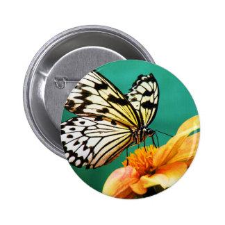 modern vintage butterfly garden 2 inch round button