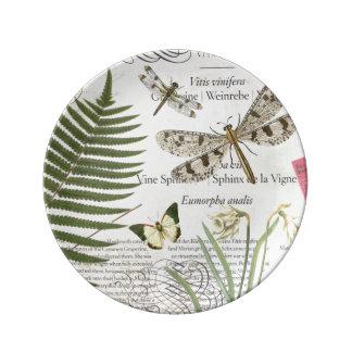 modern vintage french dragonfly porcelain plates