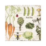 modern vintage french vegetable garden stretched canvas prints
