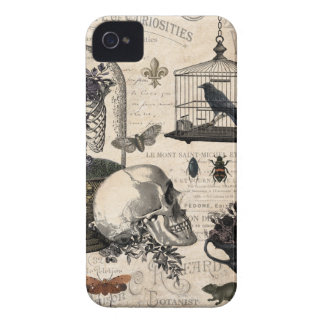 Modern Vintage Halloween Garden iPhone 4 Cases