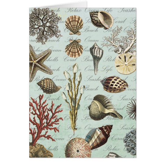 Modern Vintage Seashells Card