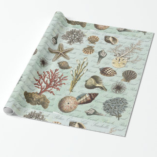 Modern Vintage Seashells Wrapping Paper
