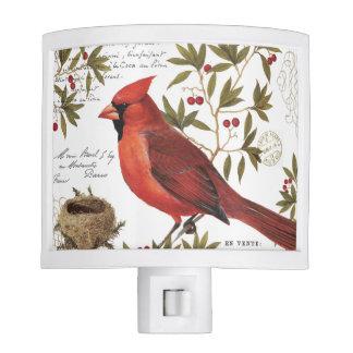 modern vintage winter cardinal night lite