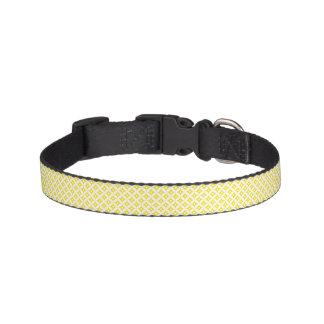 Modern Yellow and White Circle Polka Dots Pattern Pet Collar