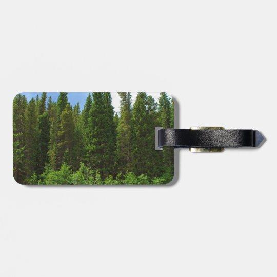 Moffat Road Pine Trees Colorado Luggage Tag