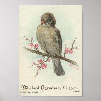 Moineau vintage de Noël Affiches