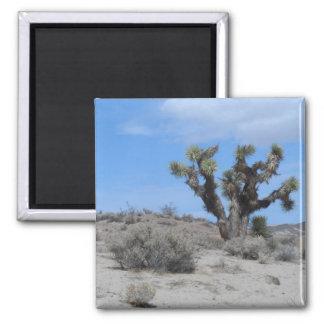 Mojave Desert Magnet