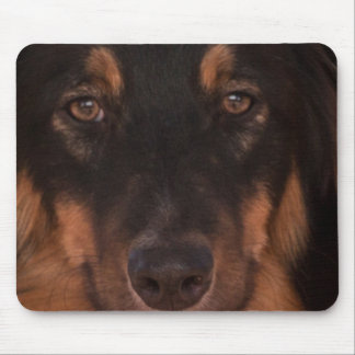 Mojo the Aussie Mouse Pad
