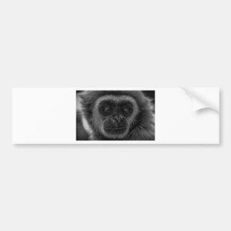 mokey bumper sticker