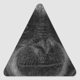 mokey triangle sticker