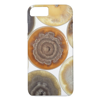 Mold culture iPhone 7 case
