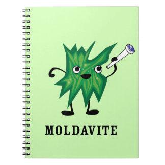 Moldavite Notebook