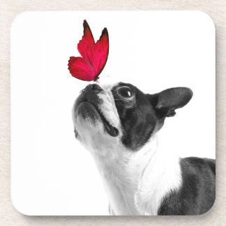 Mollie mouse child Boston Terrier Coasters