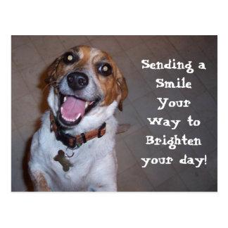 Molly Smiles! Postcard