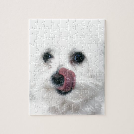 Molly the Maltese Jigsaw Puzzle