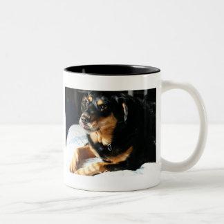 Molly's Mug
