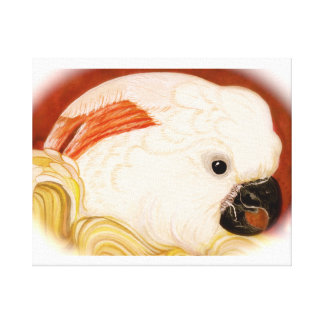 Moluccan Cockatoo Canvas Print