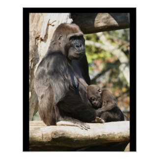 Mom and baby gorilla 2, poster