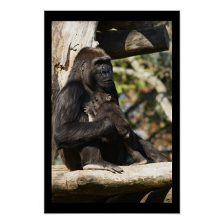 Mom and baby gorilla 3 poster