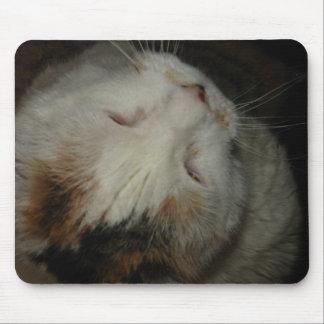 Mom, I'm sleeping!! cat mousepad