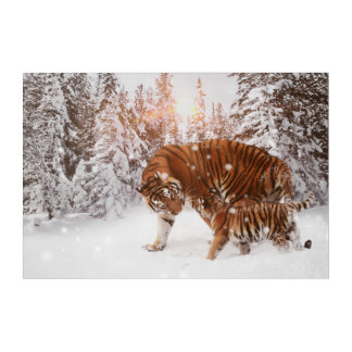 Mom & son tiger acrylic wall art