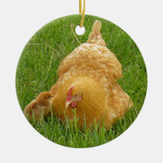 Momma chicken and baby chick ceramic ornament