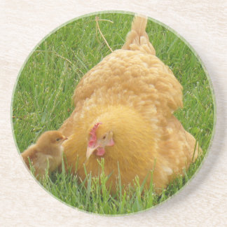 Momma chicken and baby chick coaster