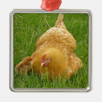 Momma chicken and baby chick metal ornament